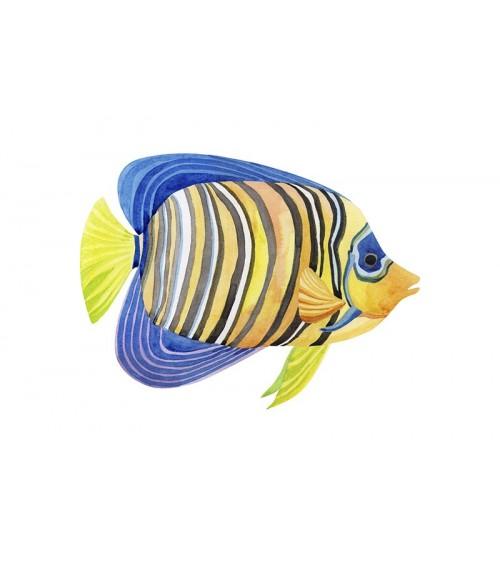 morske ribice