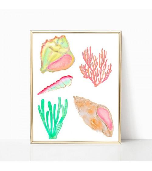 korali slike