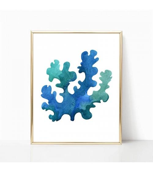 morski korali slike