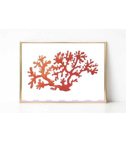 korali slike posteri