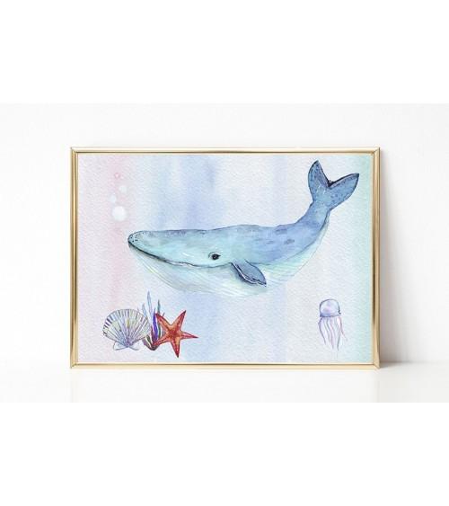 plavi kit slike