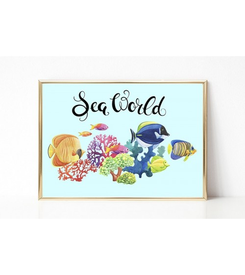 morski svet slike