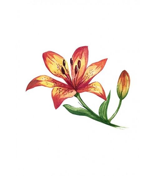cveće iz bašte slike