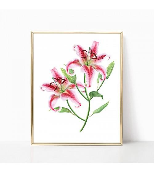 lilijan rozi