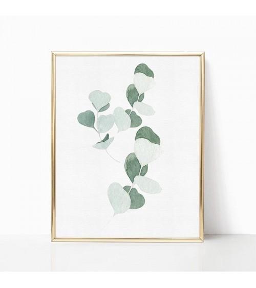 eukaliptus poster prodaja