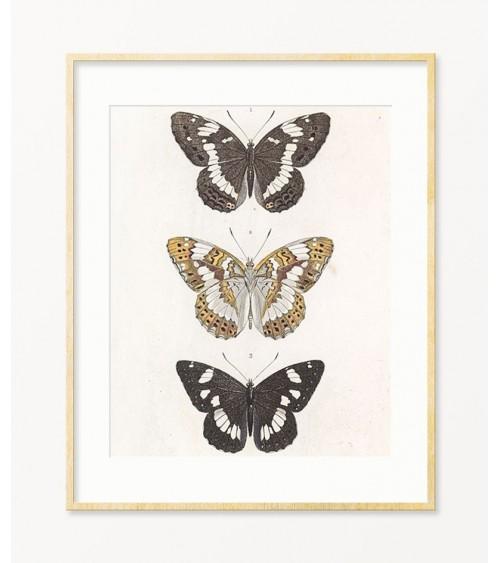 Dekoracija leptirima