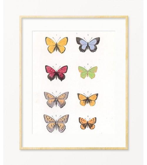 Uređenje kuće Leptiri