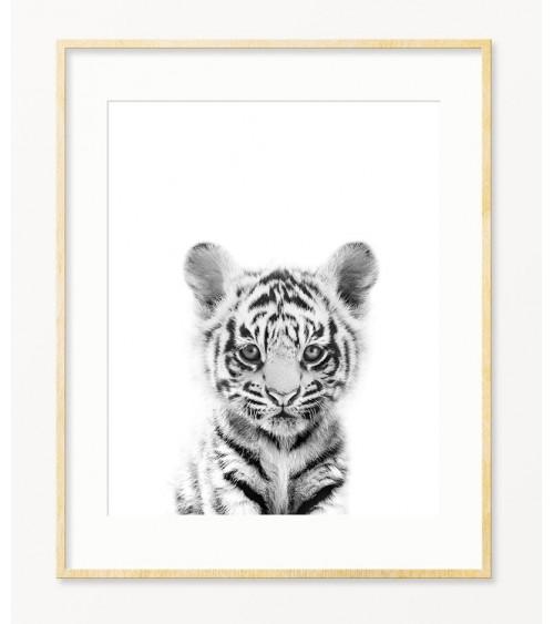 Mali tigar posteri prodaja