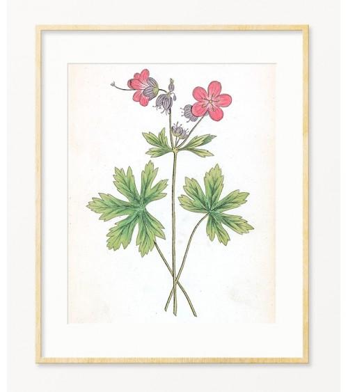Iglica cvet slike za zid prodaja