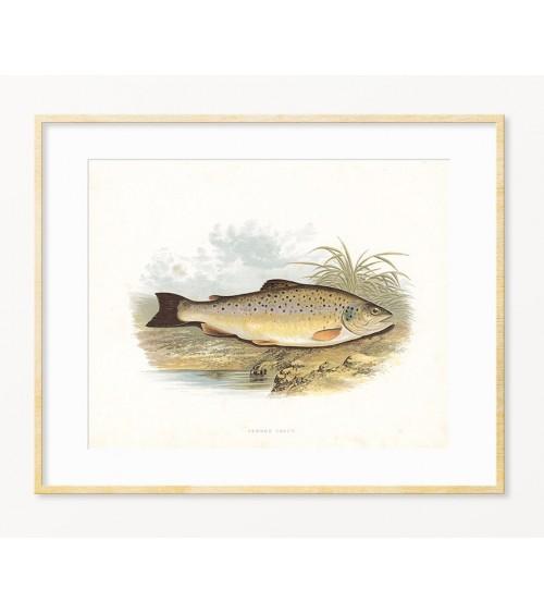 PASTMRKA - art print sa temom ribolov za dekoraciju enterijera - idealan poklon za ribolovca