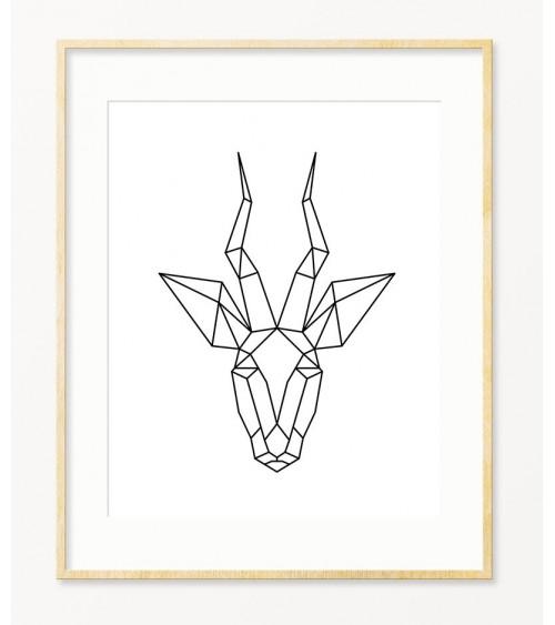 Antilopa crno beli poster za zid