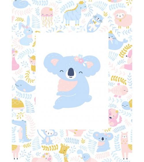 koala slike