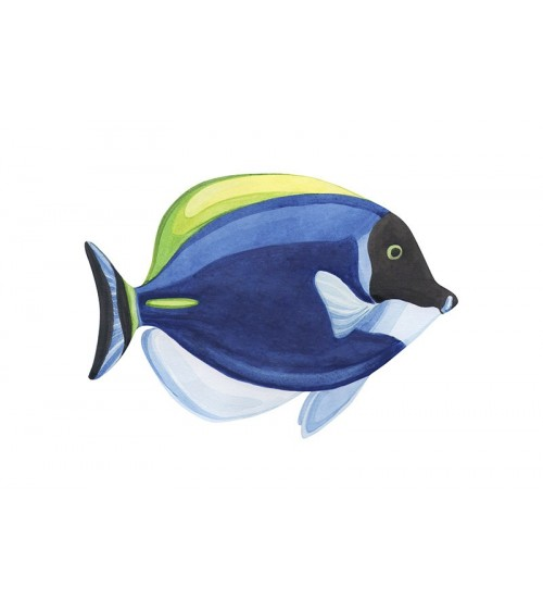 poklon za dečaka poster koralne ribice