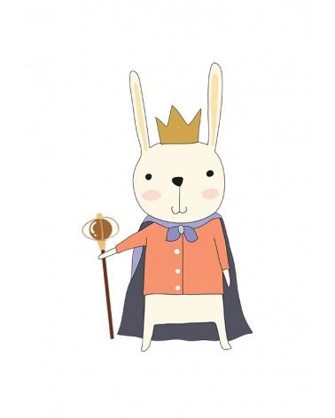 zeka princ