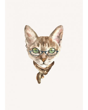 mačak sa naočarima