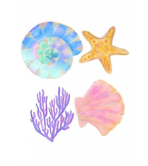 morska zvezda slike