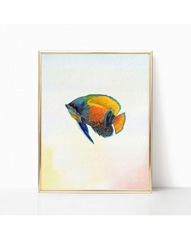 morske ribe slike