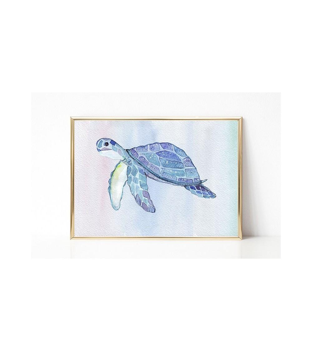 morska kornjača slike