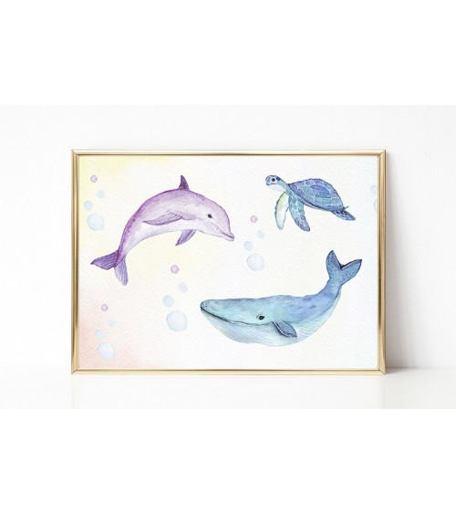 morske životinje slike