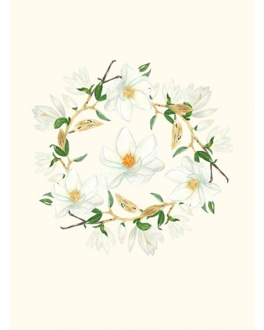cvet magnolije