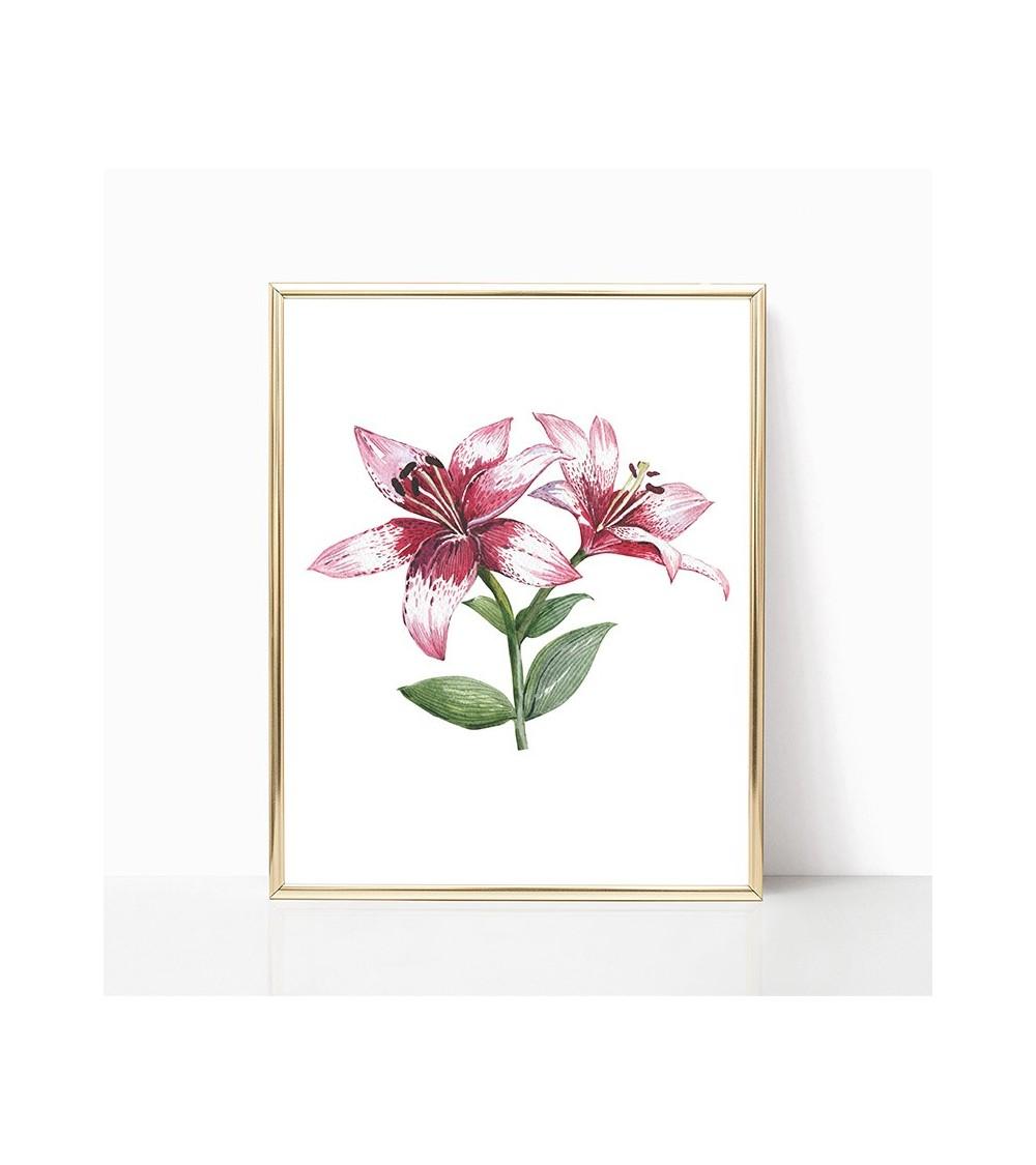 rozi lilijan