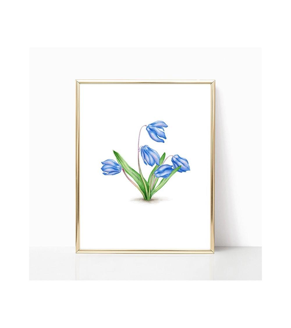cvet visibabe