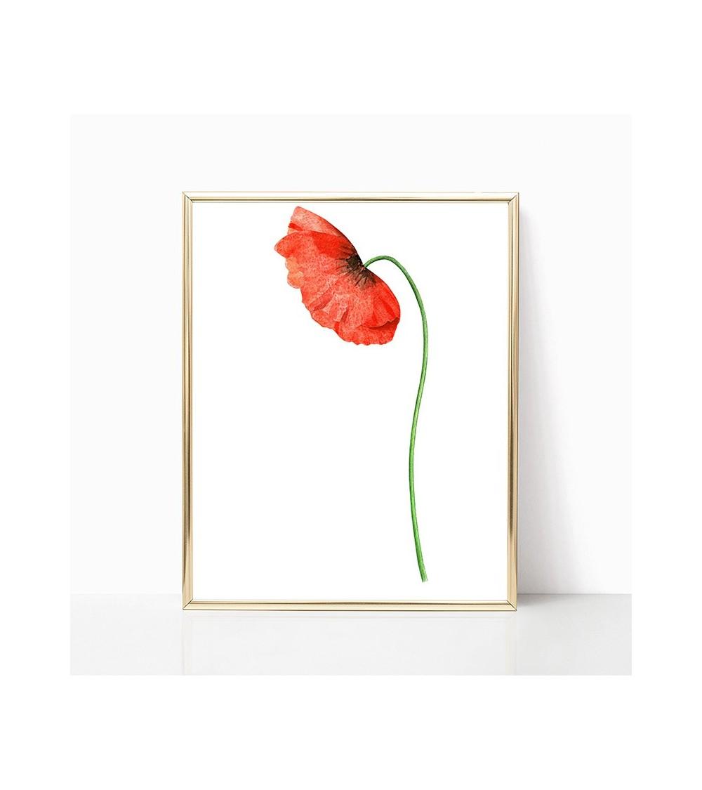 bulka cvet slike