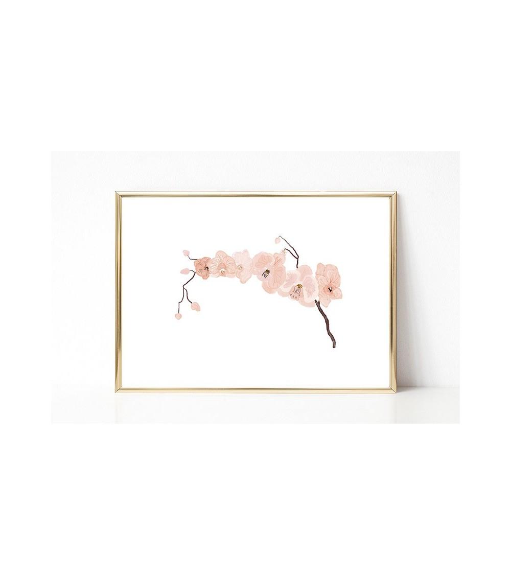 orhideja posteri