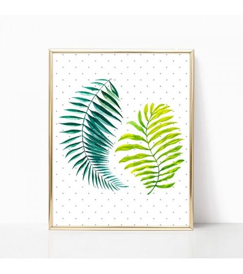 palmino lišće slike