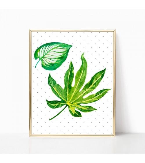 sobne biljke slike