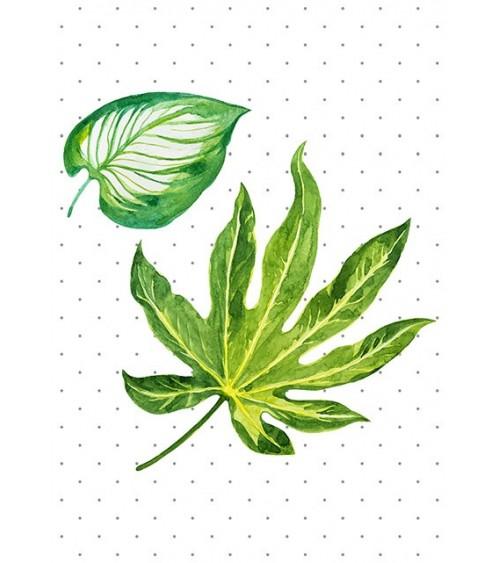 zeleni list slike i posteri