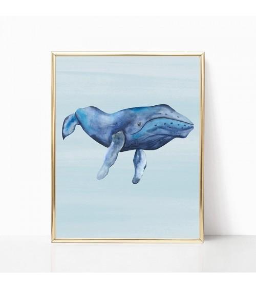 plavi kit slike za zid prodaja