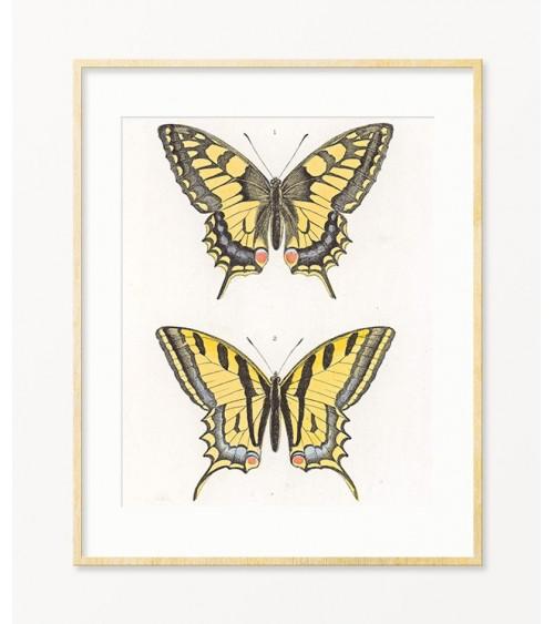 Leptiri ideje za dekoraciju