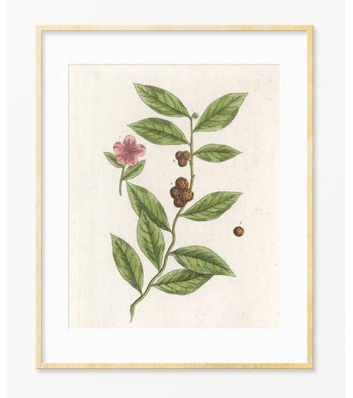Čaj dekorativne slike za kuhinju, kuću čaja