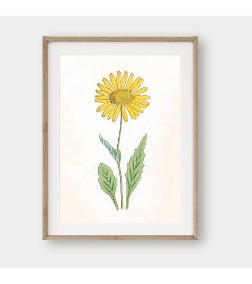 Cveće dekorativne slike za uramljivanje